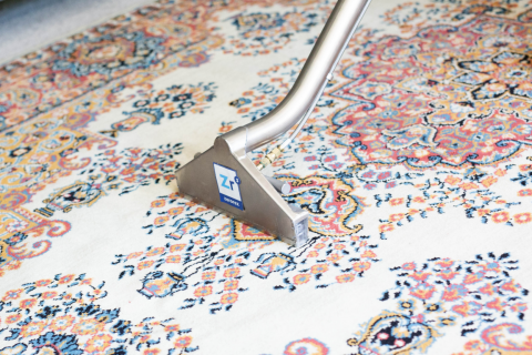 Cleaning Rugs 101 - Specialty Rug Stains Removal